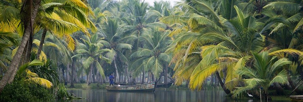 Backwaters, Alleppey